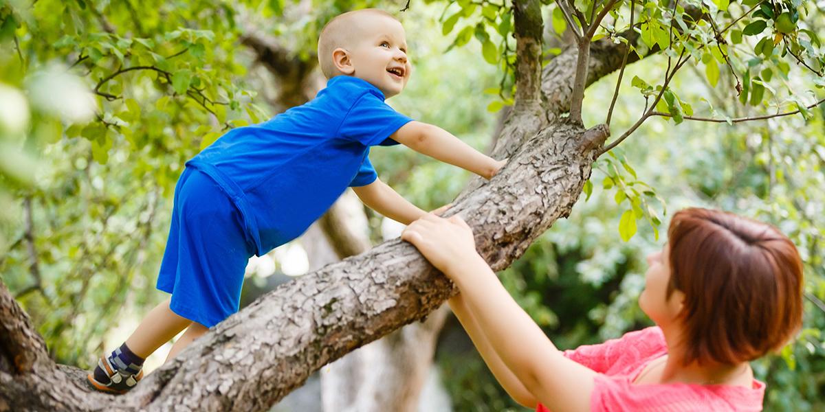 Child in Tree